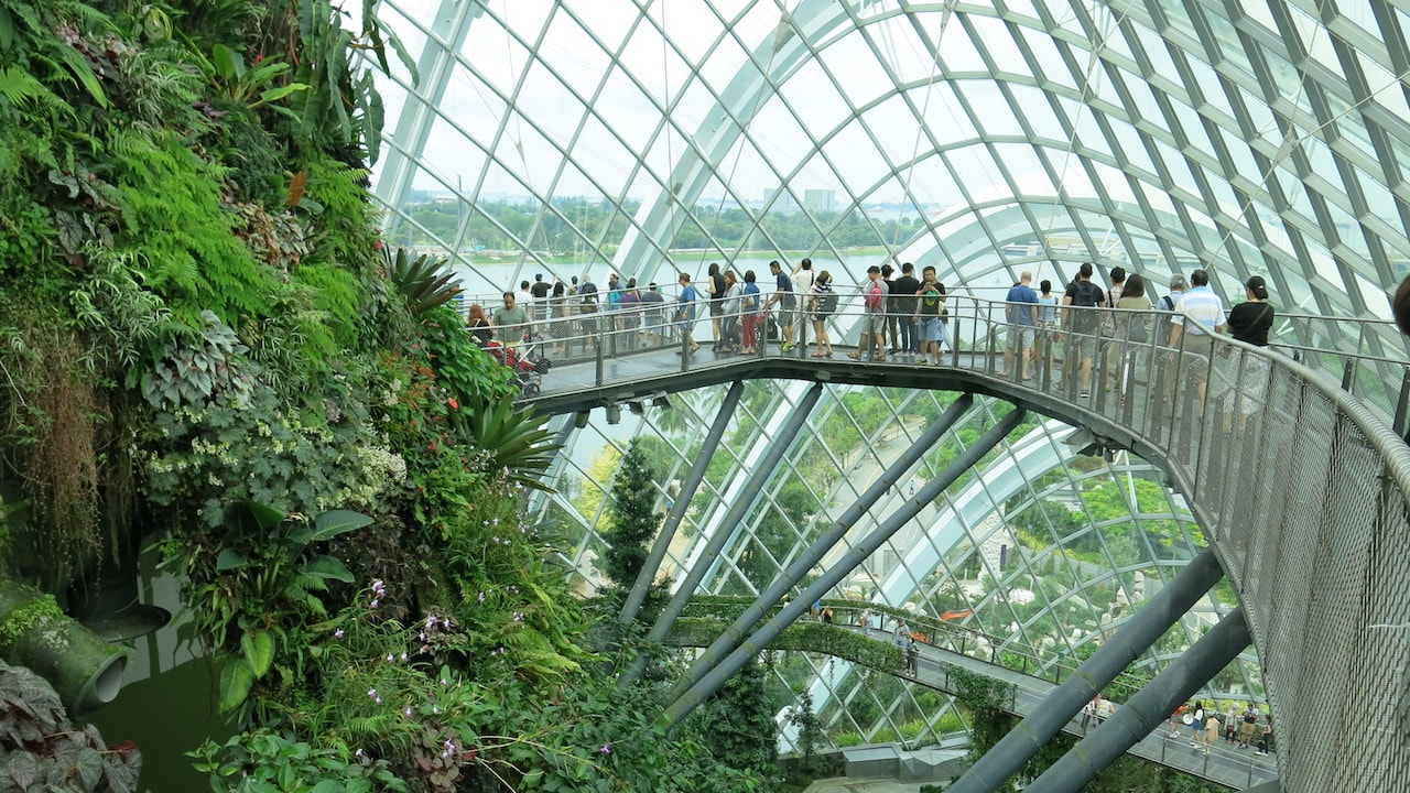People walk along a suspended bridge viewing lush greenery inside a dome in Singapore